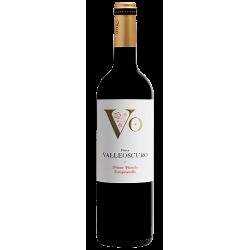 Valleoscuro - Bodega Otero
